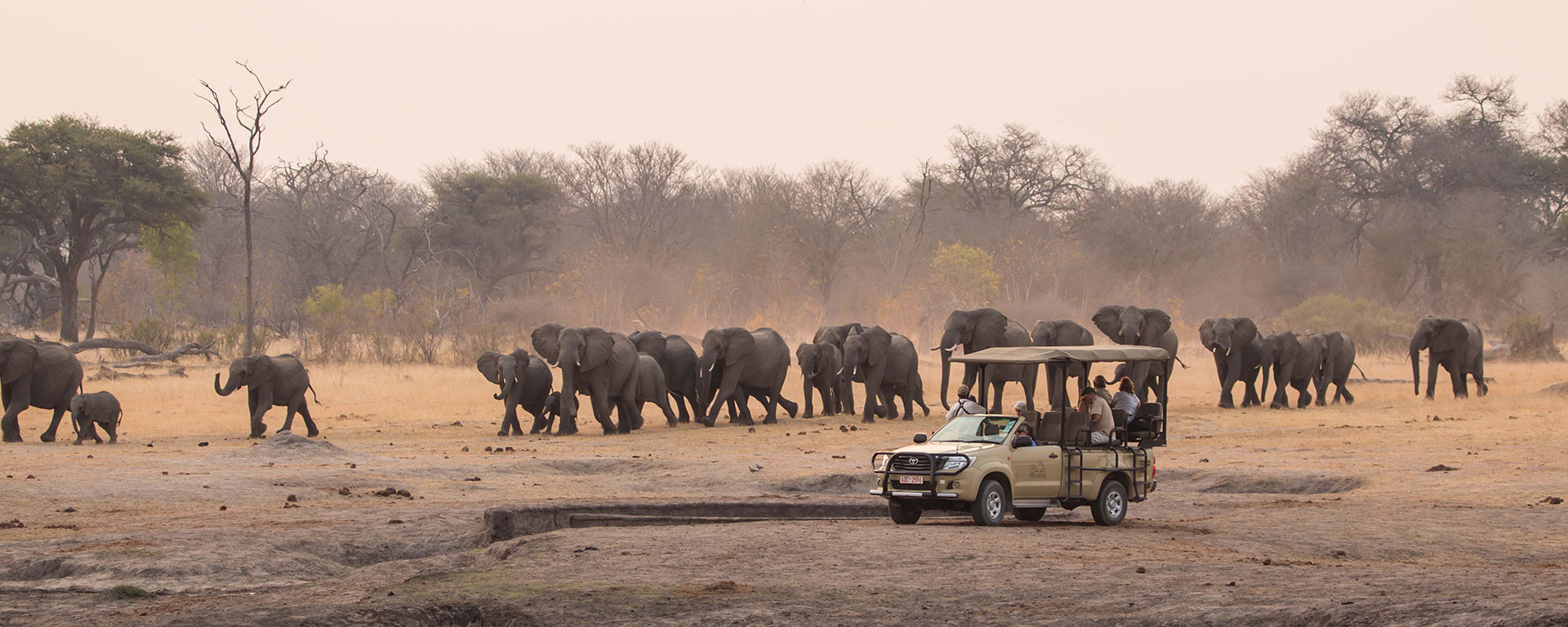 Best African Safari Tours Our Top 10 Picks Go2africa