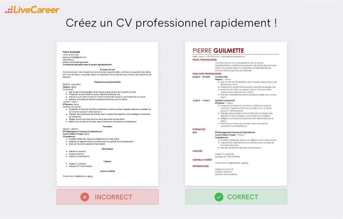 Cv Commercial Exemple Liste De Competences Commerciales