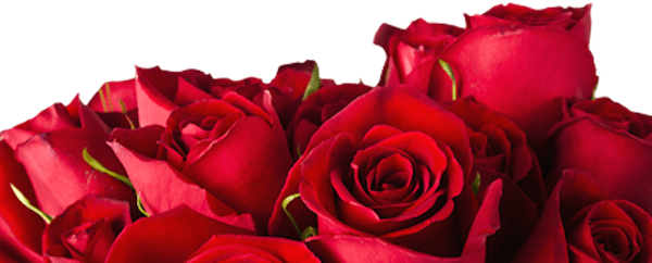 rose_bouquet_horizontal.png
