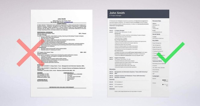 50 Resume Objective Examples Career