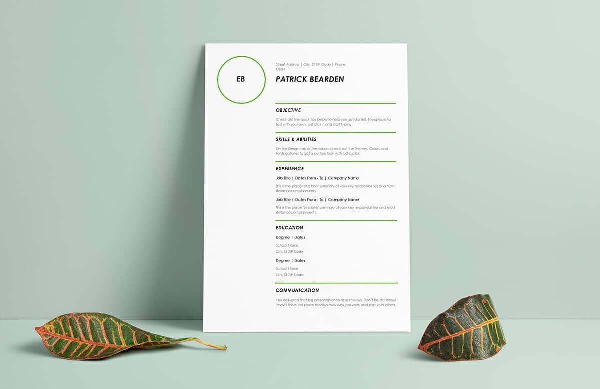 Resume Templates Word  Modern Resume Template Premium Line Of Resume     Resume Templates For Word Free Examples For Download