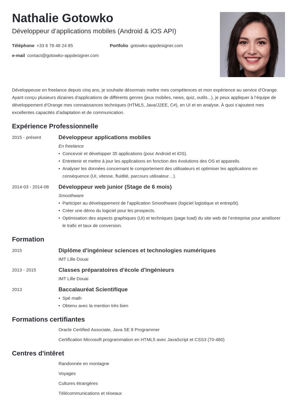 Exemple De Cv Informatique It D Ingenieur A Technicien