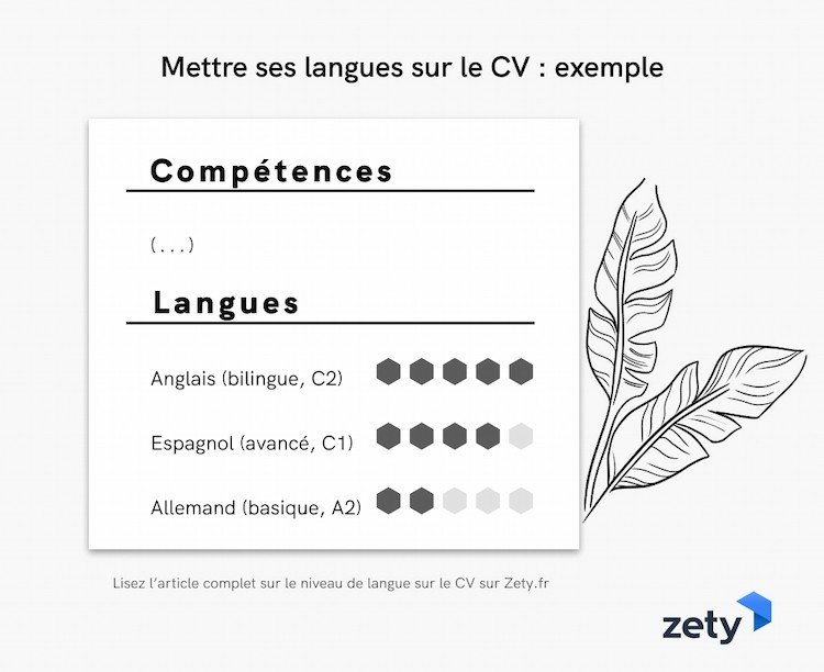 Niveau De Langue Cv Indiquer Ses Competences Linguistiques