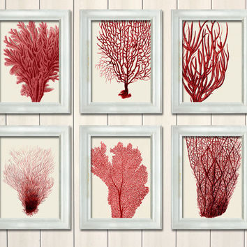 best coral bathroom decor products on wanelo