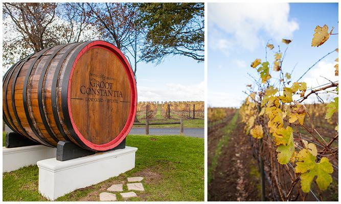 Constantia Wine Tour 2