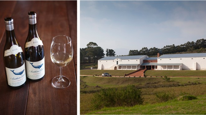A Taste of the Hermanus Wine Route
