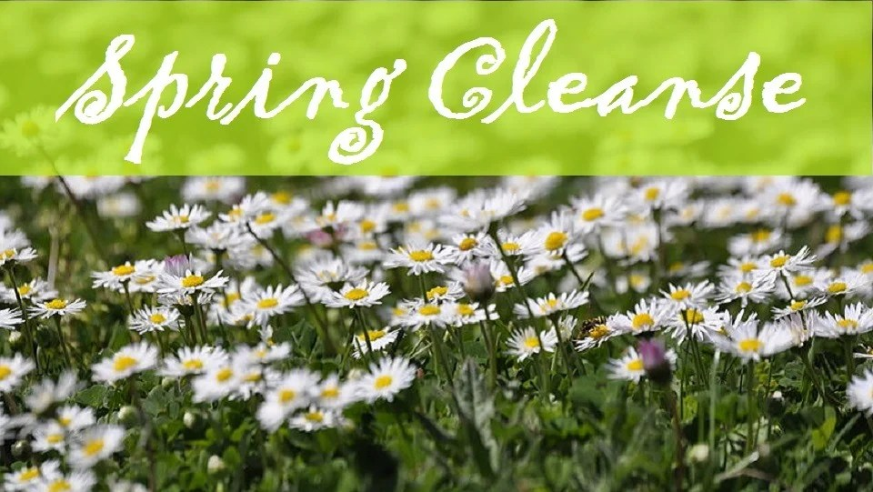 Image result for spring cleansing for the body