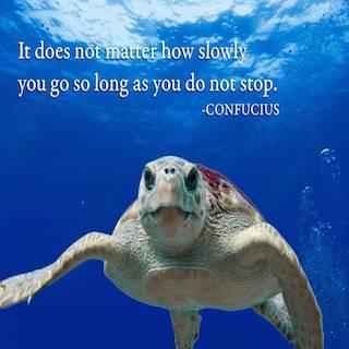 confucius1