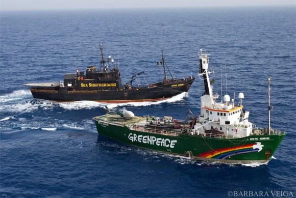 sea-shepherd-salva-baleias-santuario-antartico-greenpeace-protestos-ação-atitude-cofundador