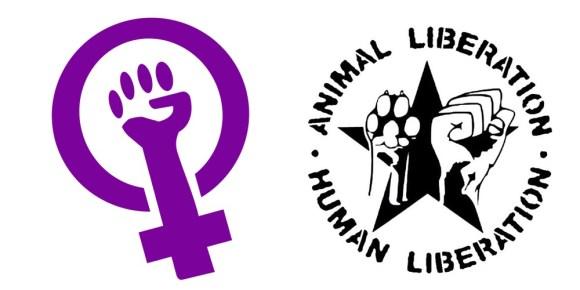 feminismo-veganismo-direitos-animais-direito-mulheres-ecofeminismo-camaleão