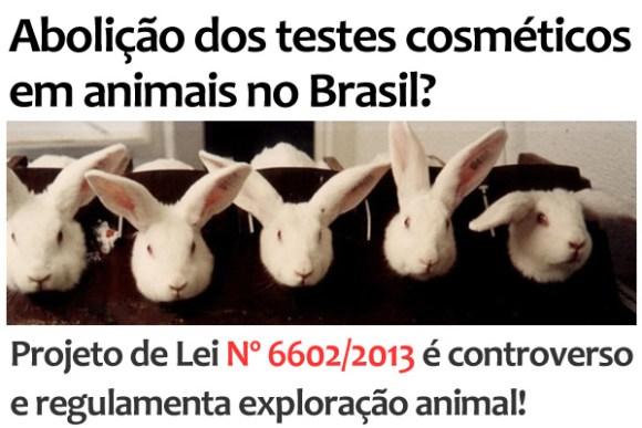 abolicao-dos-testes-cosmeticos-em-animais-no-brasil-ricardo-izar-deputado-weverton-rocha-testes-animais-cosméticos-perfumaria