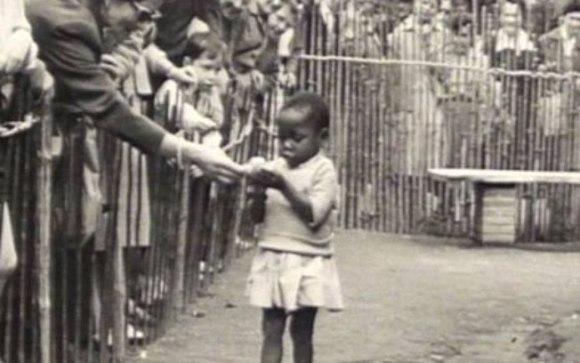 aldeia-congo-zoológicos-humanos-bruxelas-feira-mundial-1958-bélgica-colonização-direitos-escravidão