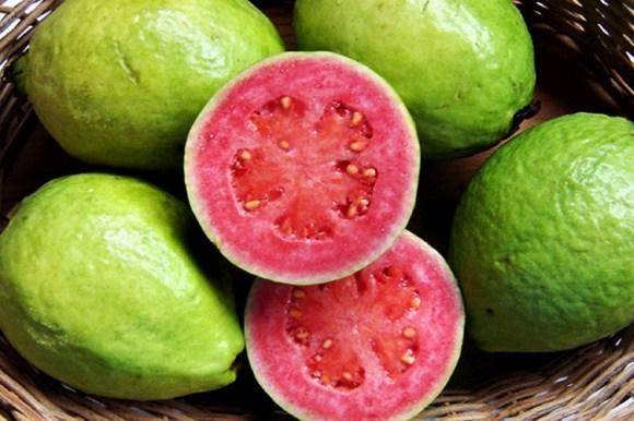 goiaba-vitamina-c-sucos-funcionais-um-coquetel-de-nutrientes-e-sabor