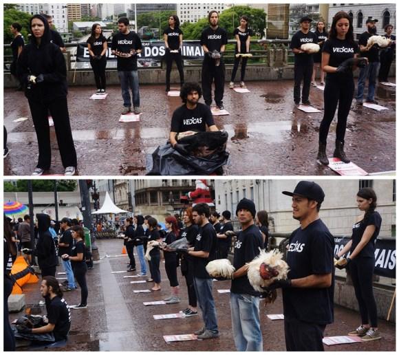 veddas-faz-protesto-impactante-em-sao-paulo-dida-2014-ativismo-vegano-defesa-dos-animais