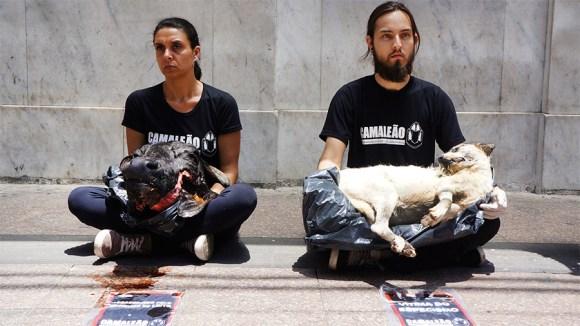 ong-realiza-ato-impactante-em-defesa-dos-direitos-animais-CAMALEÃO-Veganismo-Especismo