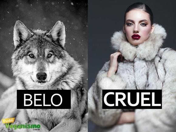 direitos-animais-beleza-vegana-sem-crueldade-peles-de-animais-couro-especismo