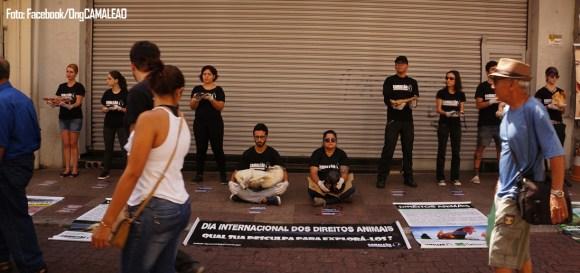 ong-camaleao-faz-ato-impactante-para-promover-veganismo-direitos-animais-taubate-vale-do-paraiba-interior-sao-paulo-ativismo-libertacao-animal-dida
