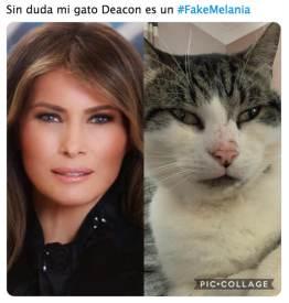 Tiene una doble la primera dama de Estados Unidos, Melania Trump? |  Noticias de El Salvador - elsalvador.com