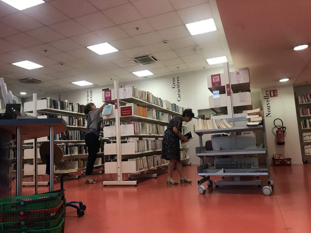 culture a grenoble les bibliotheques