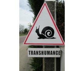 Au printemps, on ne touche pas à l'escargot de Bourgogne