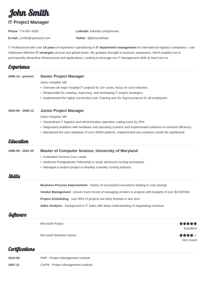 Proffessional resume template resume sample 20 resume templates create your in 5 minutes yelopaper Image collections