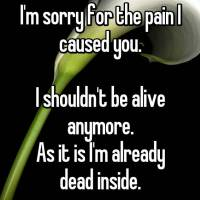 I wish I had not caused you the pain...