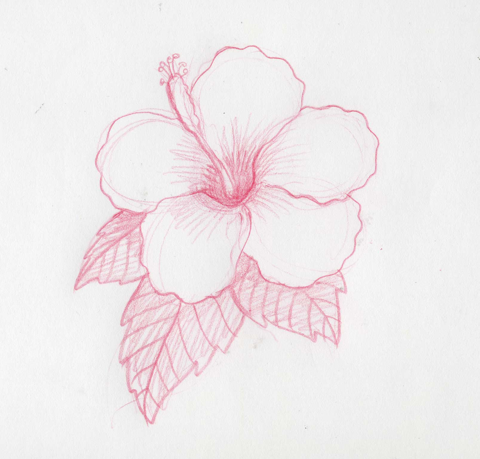Cosas Para Ninas Dibujar