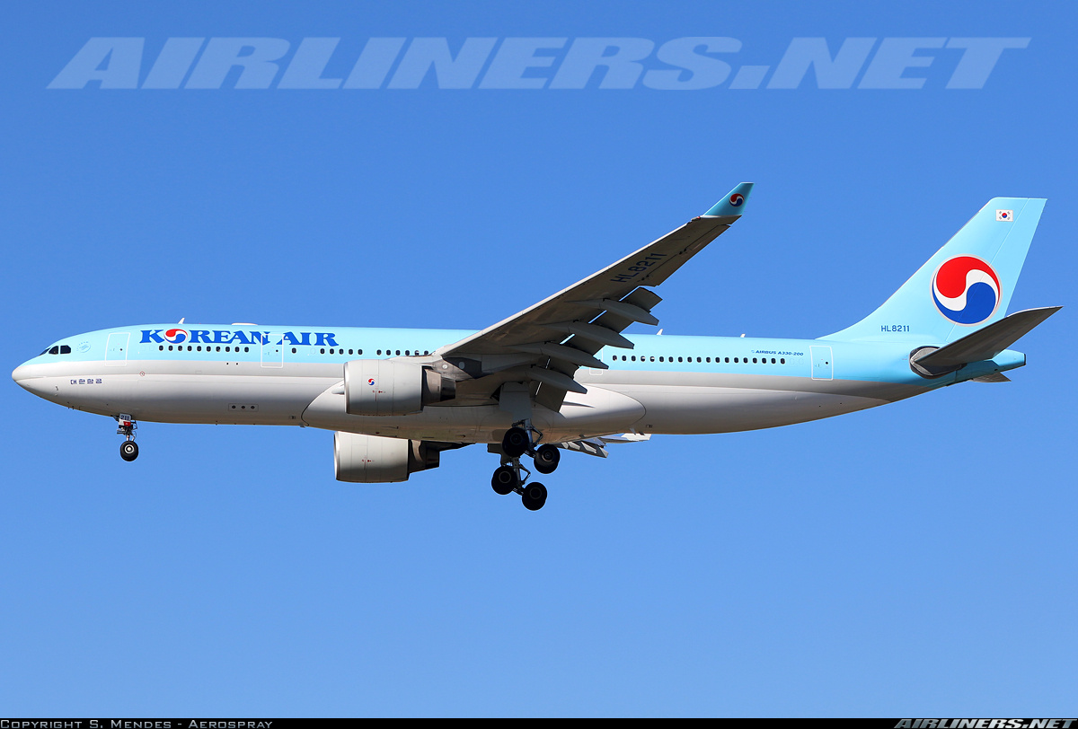 Airbus A330-223 aircraft picture