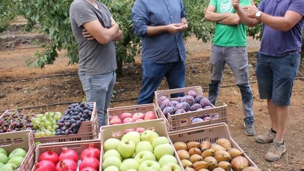 Agricultores con frutas
