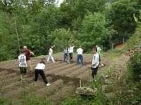 Educación oferta 250 plazas para el campo de trabajo de Búbal (Huesca)