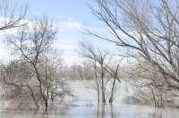Ejecutivo autonómico y DPZ colaboran para paliar los efectos de la crecida del Ebro