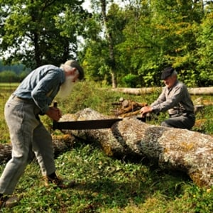 Hard Physical Labour Boosts Heart Risk Health24