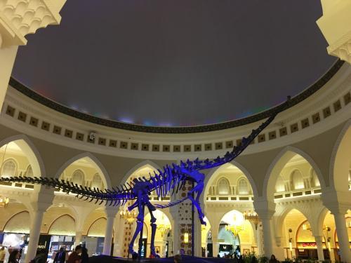 モール内に<br />巨大な恐竜の化石が展示なんて!<br /><br />さすが ドバイ!
