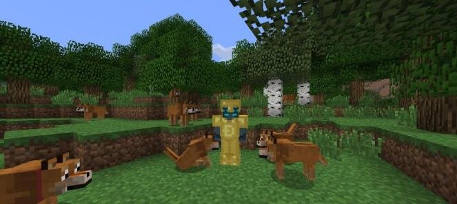 Doge-Mod-2.jpg