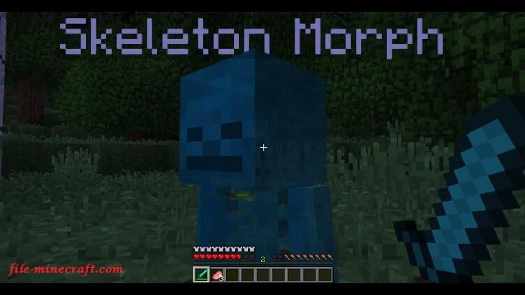metamorph-mod-3.jpg