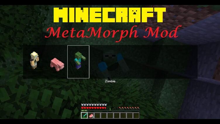 metamorph-mod.jpg