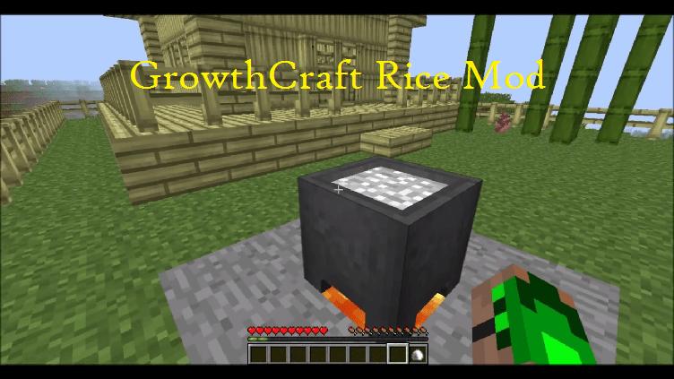 GrowthCraft Rice Mod