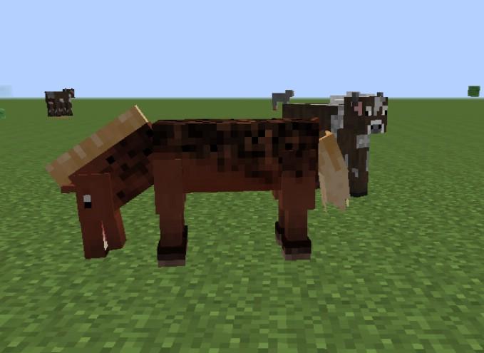 Better-Horses-Mod-3.jpg