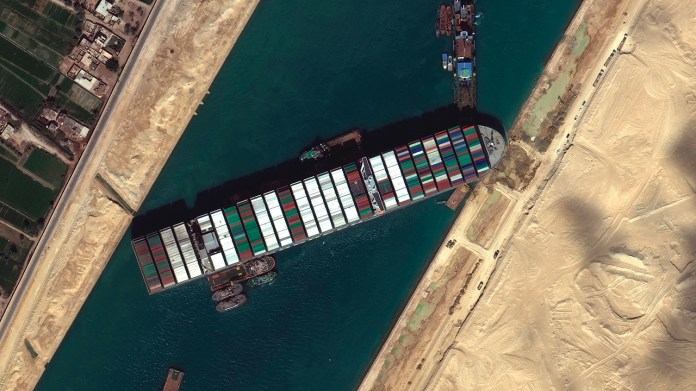 Thousands of animals aboard cargo ships could die if Suez Canal remains blocked, NGO warns