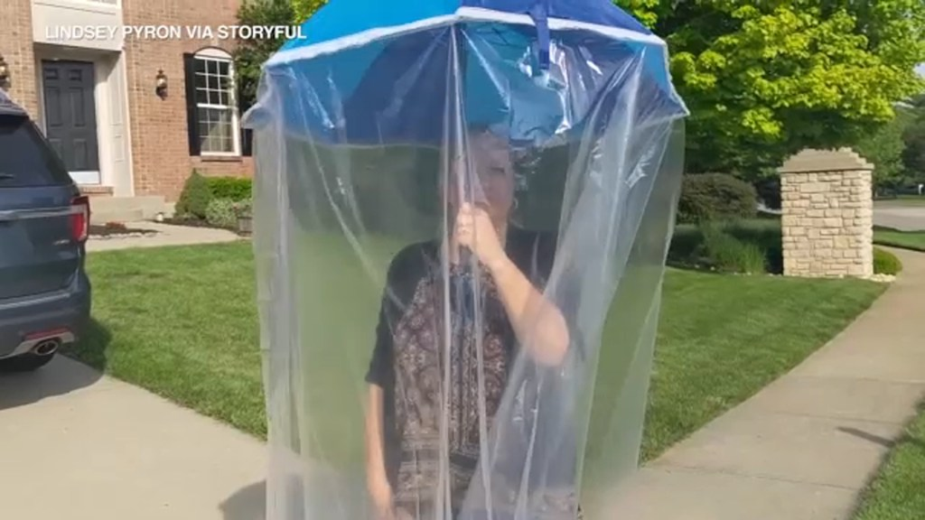 Ohio woman with 'cicada-phobia' creates cicada-proof shield out of shower liners