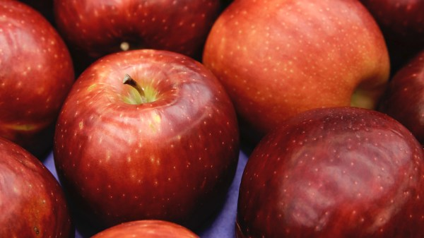 Cosmic Crisp apple variety to debut in stores this December: