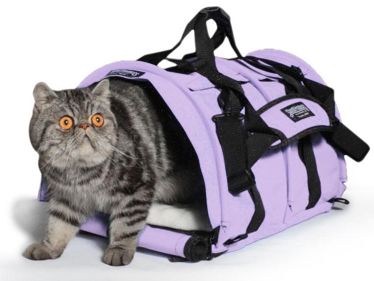 Sturdibag kattbur är både rymlig och komfortabel