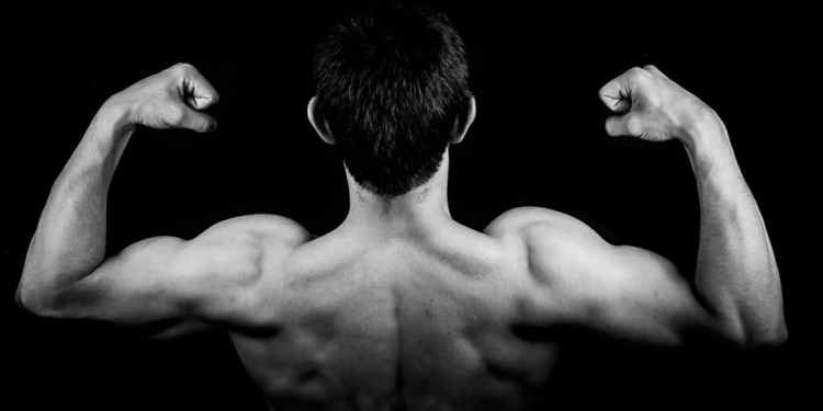 6 Arm Day Exercises to Help You Put on Muscle Mass