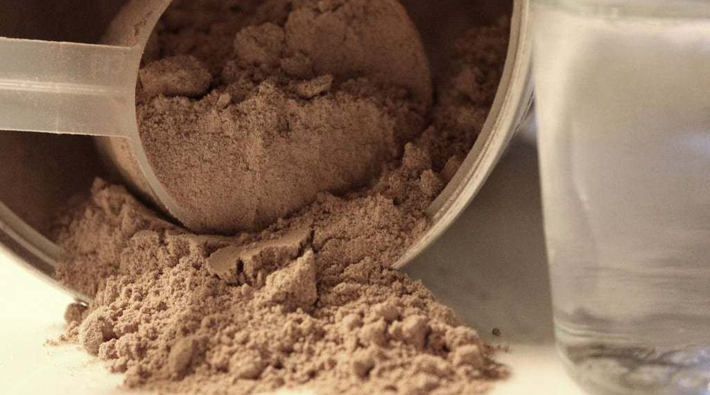 Concentrate vs Isolate: How to choose the right type of protein