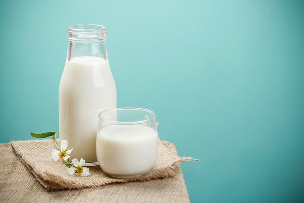 milk yogurt