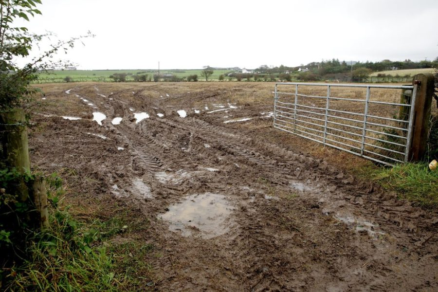 Ireland the wettest the country has been in over 300 years   Agriland ie Ireland the wettest the country has been in over 300 years