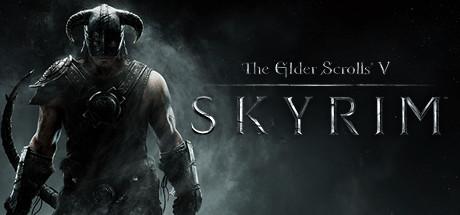 Image result for Skyrim