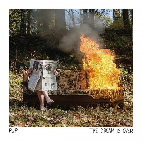 Image result for the dream is over pup
