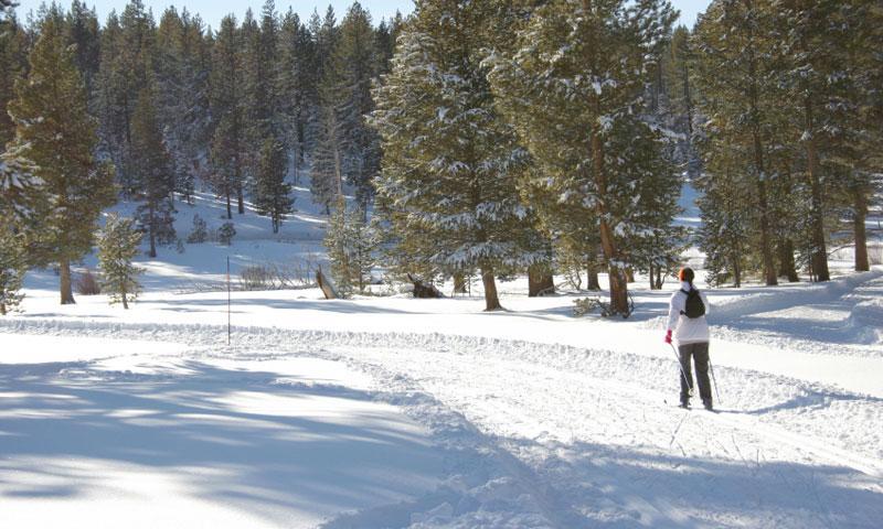 Resorts Rv Tahoe Lake