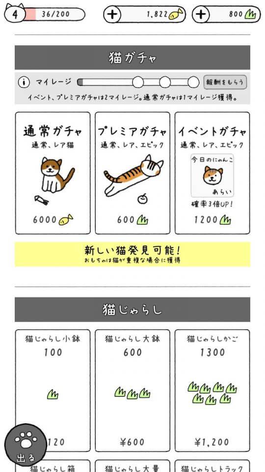 myadorablecats_10